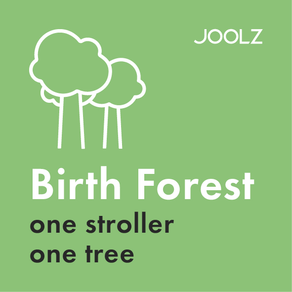 Joolz Hub Life Birth Forest