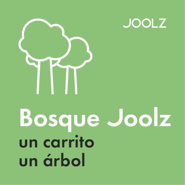 Joolz Hub Life Birth Forest